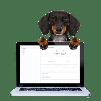 COBRA Administration Dog